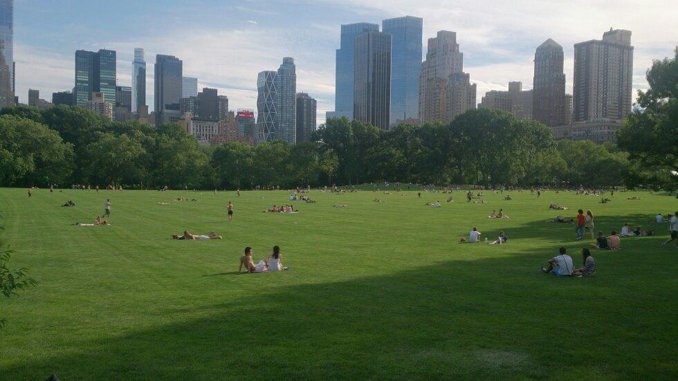 Jonas_Kocevar_New_York_Central_Park_2014